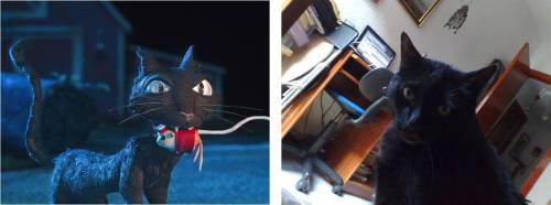 Dos gatos negros, el de Coraline y Boris